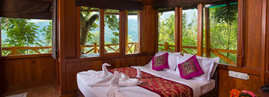 Kerala Honeymoon Package With Tree House Image